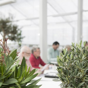goda rum växthus möte